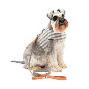 Mutts&Hounds - 'Flint Stripe Harness' Small