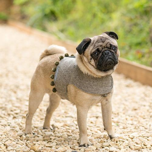 Mutts&Hounds - 'Grey Tweed Pompom Harness' X Small