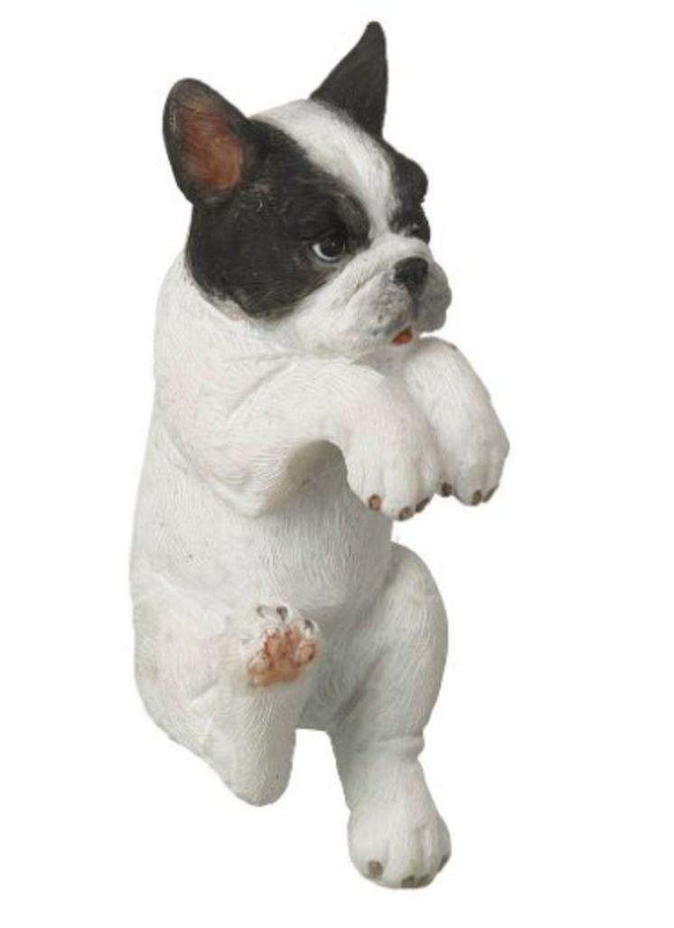 Parlane Pothanger French Bulldog