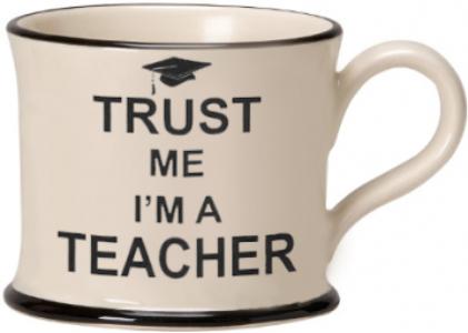 moorland pottery - trust me I'm a teacher mug