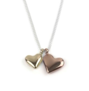 Tales from the Earth Sterling Silver - twin heart for love and friendship necklace