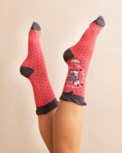 Powder A-Z Ankle Socks - E